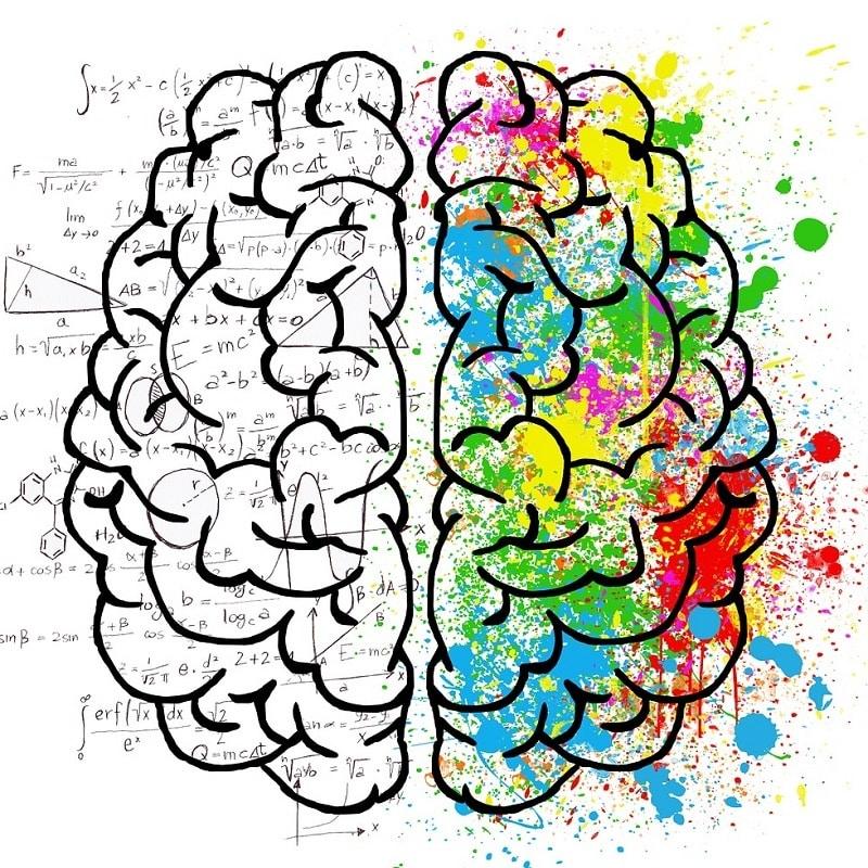 à quoi sert le sommeil apprentissage et mémoire